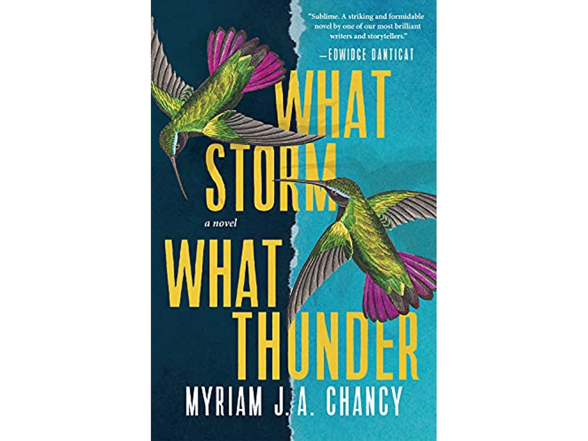 The cover of What Storm, What Thunder
